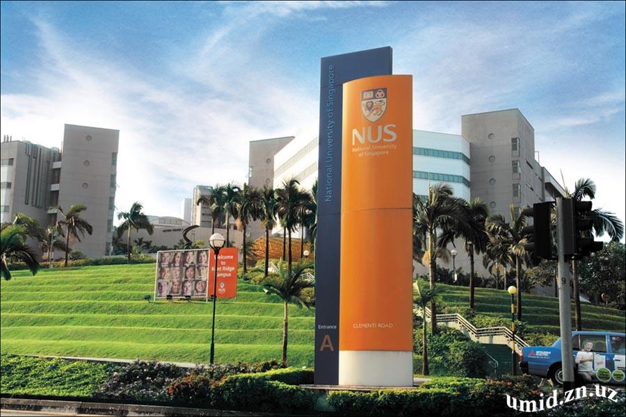 Сингапур университети